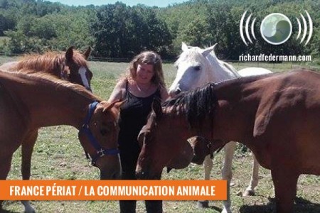 périat-comm_animale